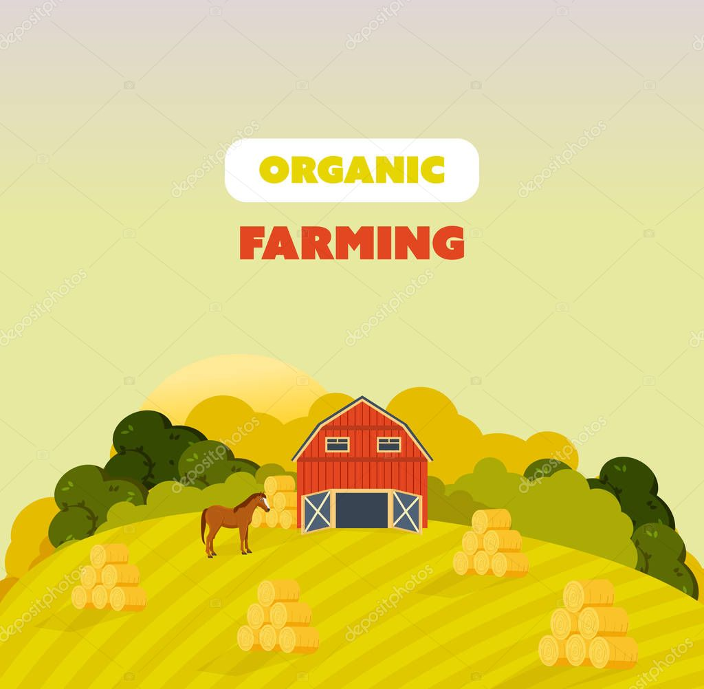 Farm surroundings, grounds, fields, agriculture, nature, natural environmentally friendly products.