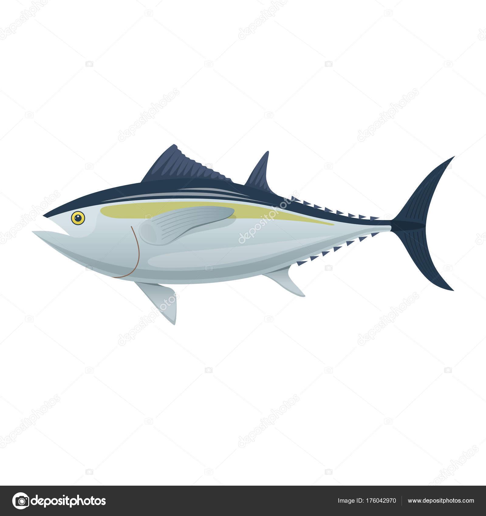 Pesce Di Mare Coloratissimi Pesci Di Mare Tonno Pesce Mangiare