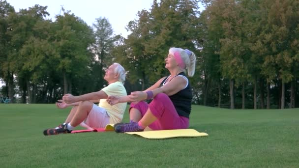 Elderly couple doing yoga.