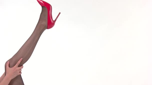 Leg wearing stocking and shoe.