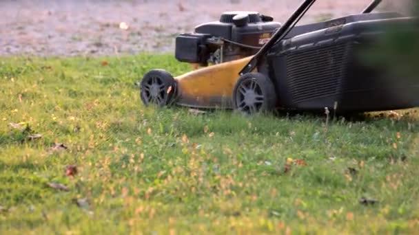 Lawn mower in motion.