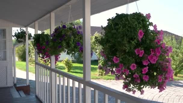 Flowers hanging on the porch.