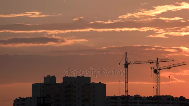 Cranes and buildings, sunset background.
