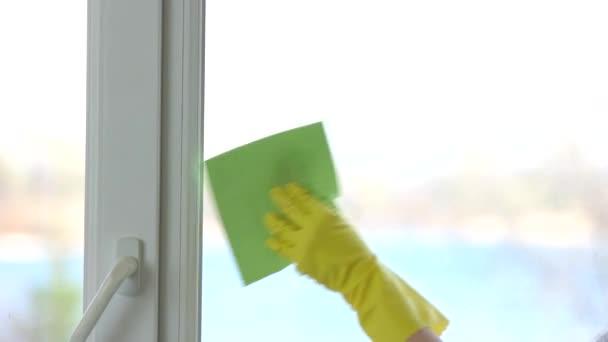 Hand in Hand Fenster putzen.