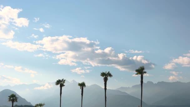Pálma fák és hegységek, ég