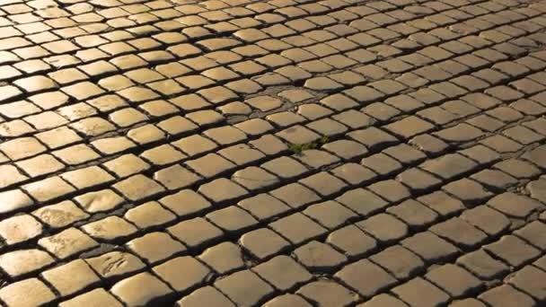 dlažební kameny textura