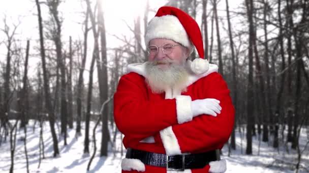A téli erdő háttér Santa