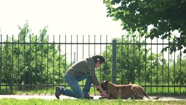 Žena je nastavení tlapky psa.
