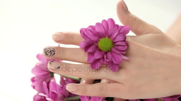 Růžový chryzantéma v ženské drahýma rukou.