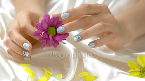 Růžový chryzantéma v pěstěné ruce.