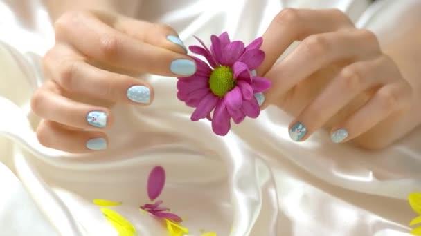 Žena rukou odtrhnout květy chryzantém.