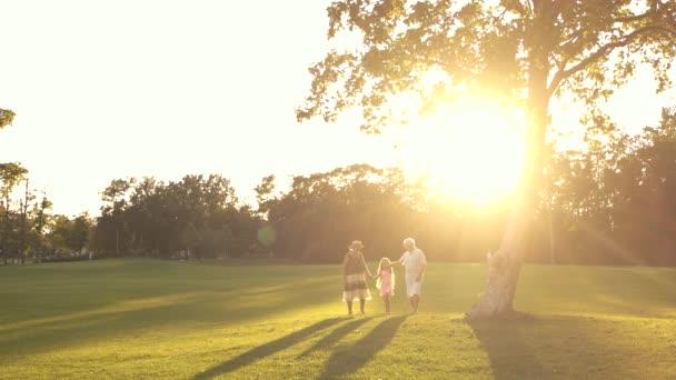 Nonni con la nipote che cammina sullerba