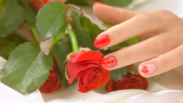 Ženské ruce a růží, pomalý pohyb.