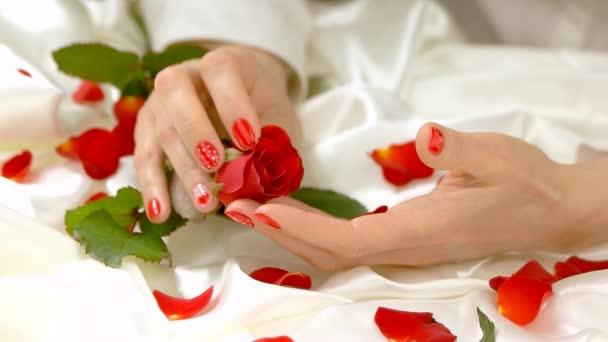 Ruka se dotýká rudou růži, pomalý pohyb