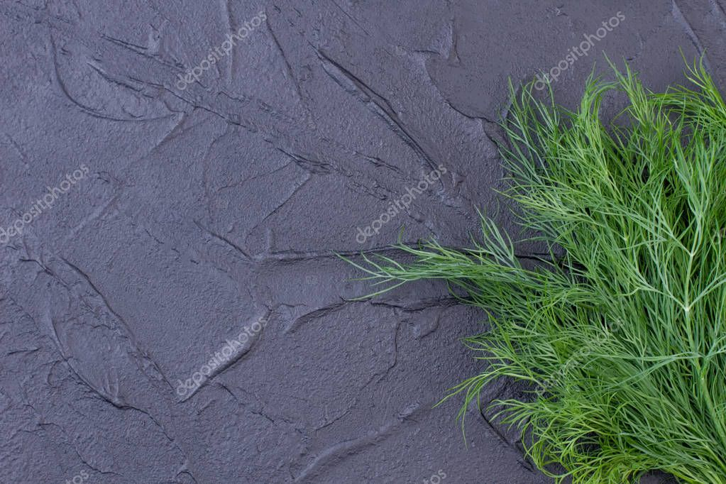 Bunch of fresh dill herb on slate.