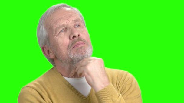 Usmíval se vousatý muž myšlení, zelená obrazovka