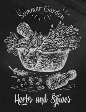 Beautiful hand drawing healthy herbs and spices mortar. Herbs, basil, chervil on the chalkboard background