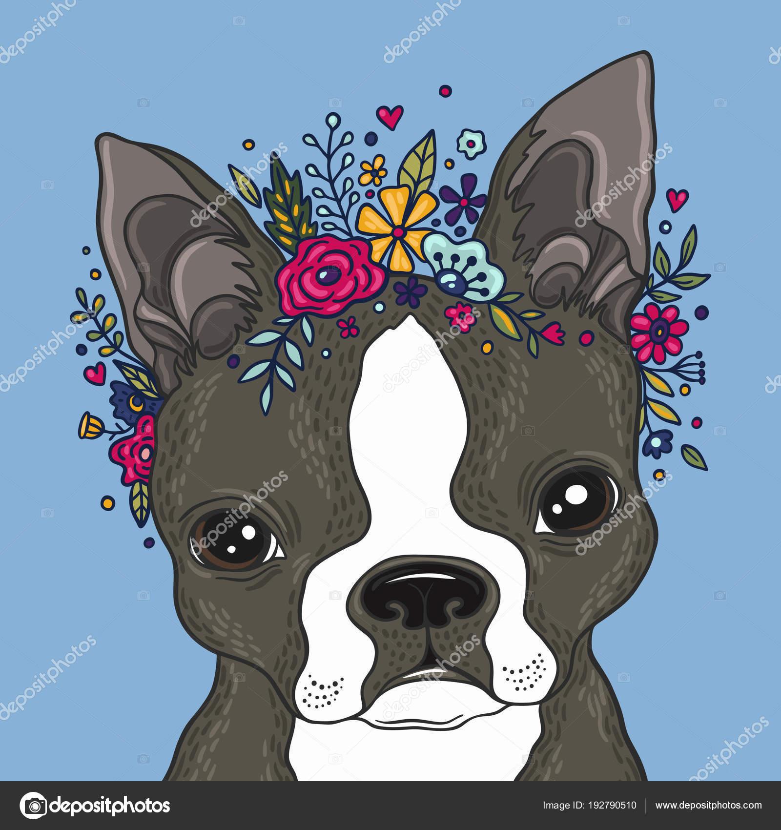 Retrato de Boston terrier — Archivo Imágenes Vectoriales ...