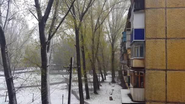 Vícepodlažní budovy. Sníh a stromy.