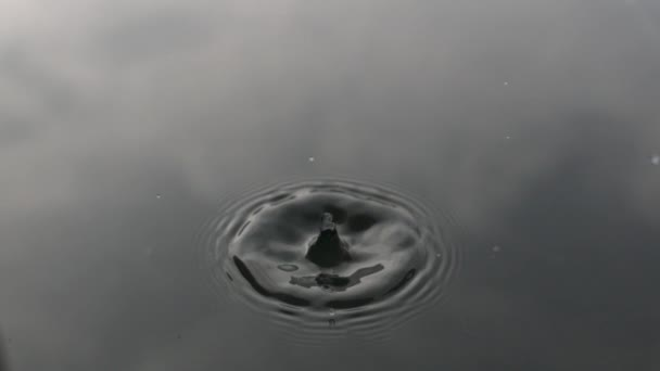 Gocciolina di acqua che cade