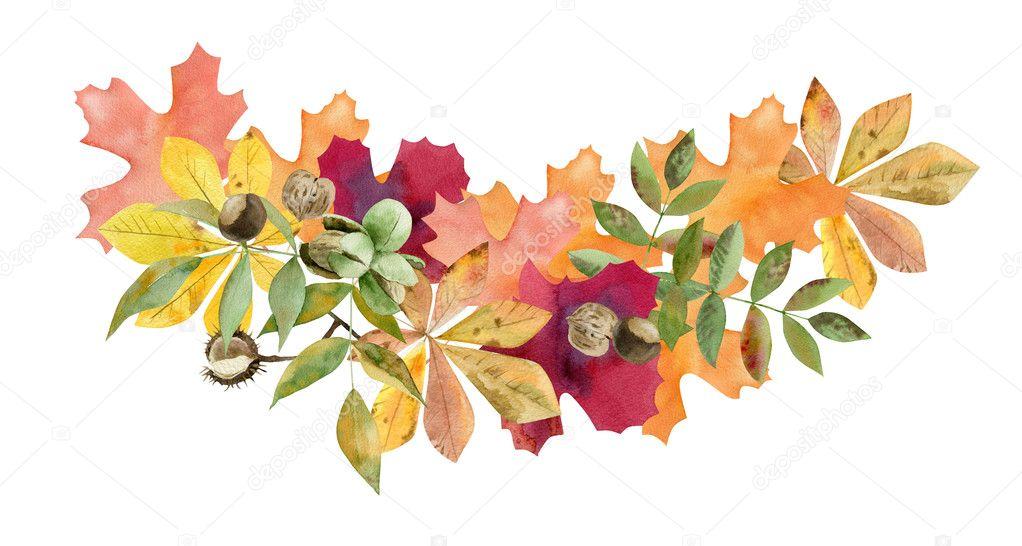Ručně malované akvarel maketa Klipart šablony podzimní listí — Stock  Fotografie © olesya@turchuk.ru #125092026