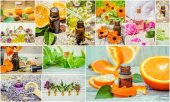 Fotografia collage of herbs and essential oil.