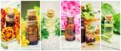 medicinal herbs collage. Selective focus.