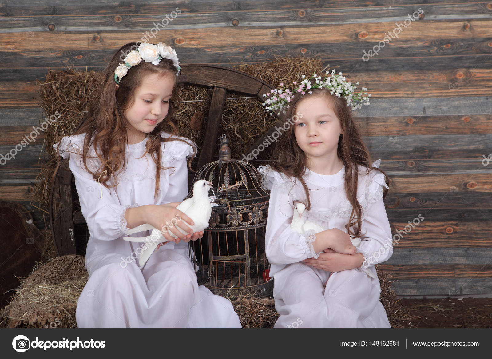 f3d79af487d4 Δύο κορίτσια φίλες διεξάγουμε μια ζωντανή πάπια και ένα pigeo — Εικόνα από  ...