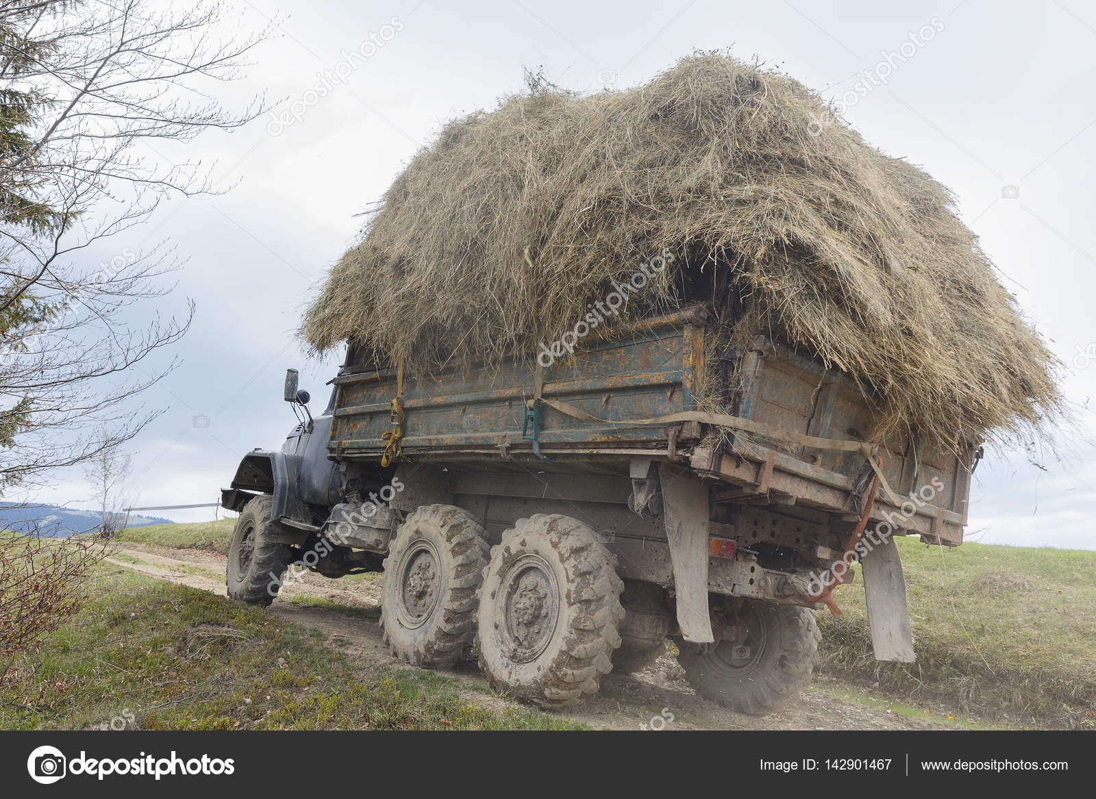 Old truck loaded with hay rides in the highlands — Stock Photo ...