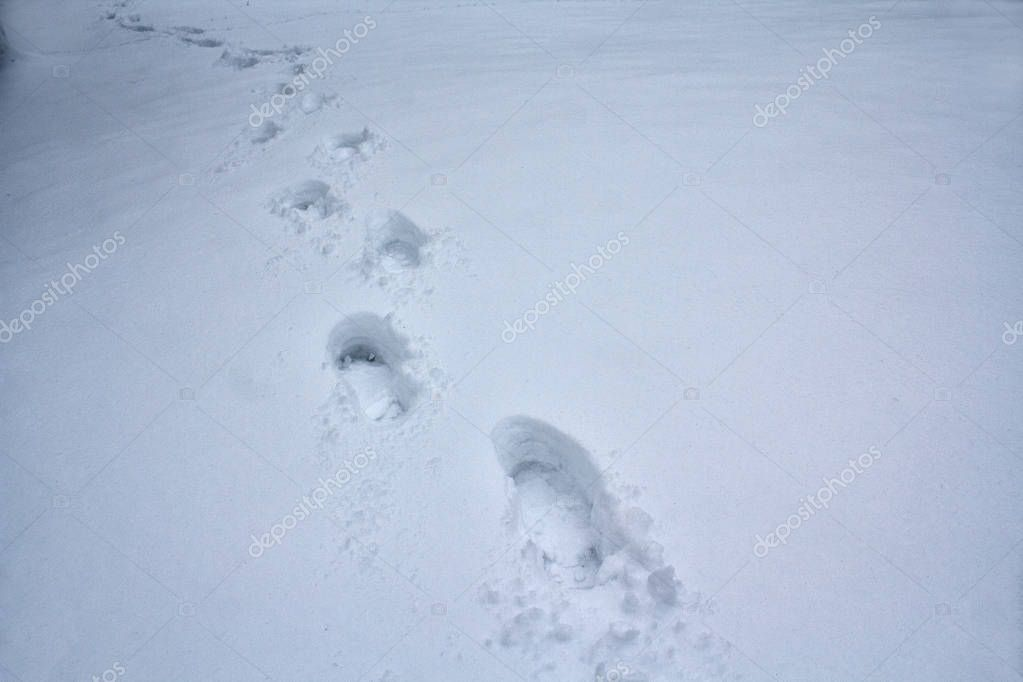 Human footprints going into the distance on white snow. Winter