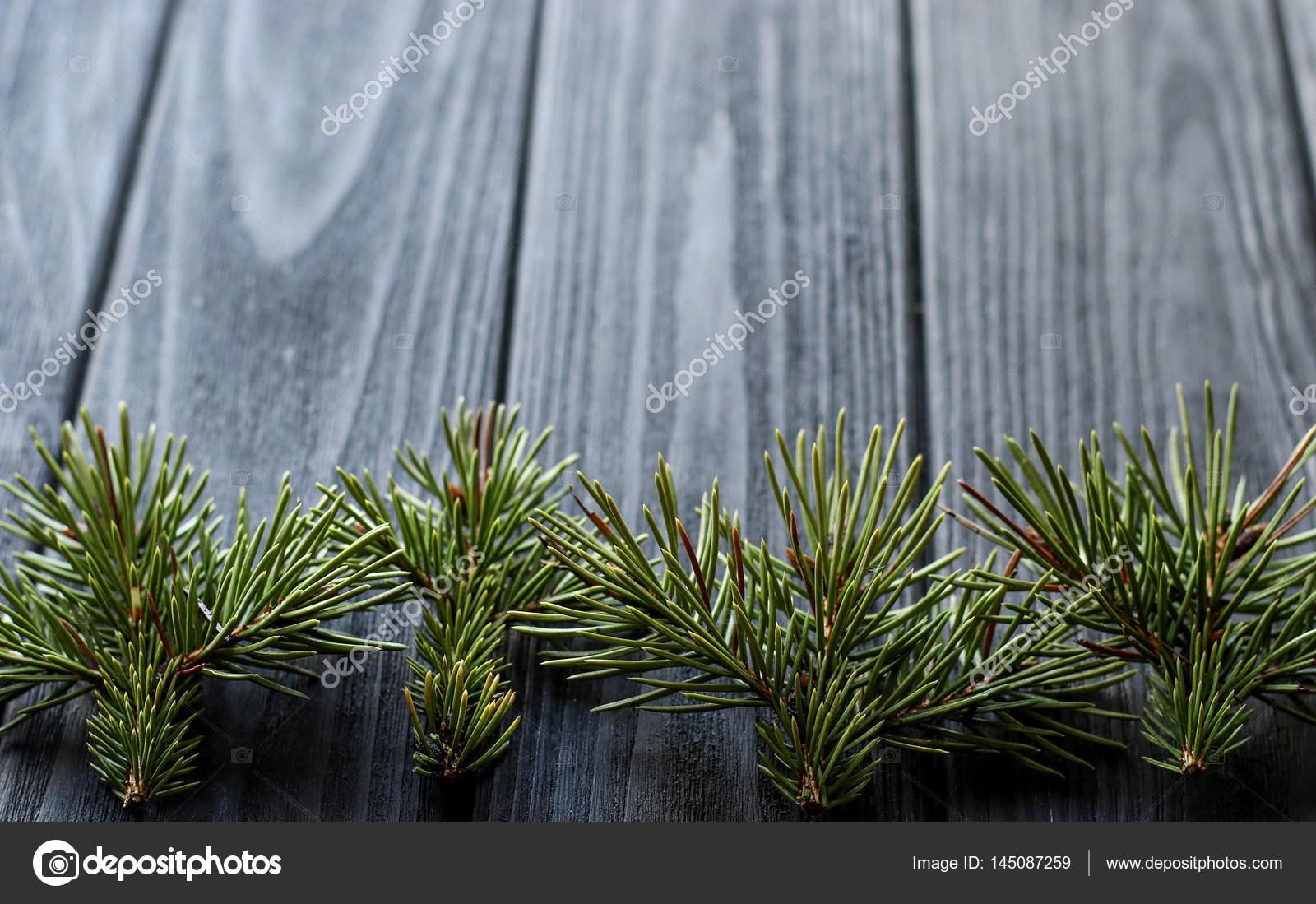 https://st3.depositphotos.com/4018499/14508/i/1600/depositphotos_145087259-stockafbeelding-kamer-interieur-met-bos-takken.jpg