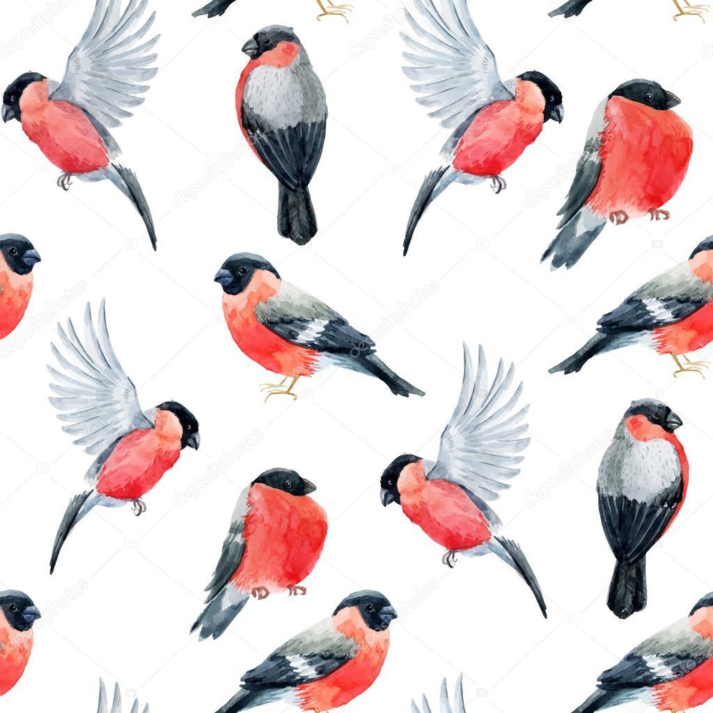 watercolor bullfinch bird pattern stock vector zeninaasya 126037160