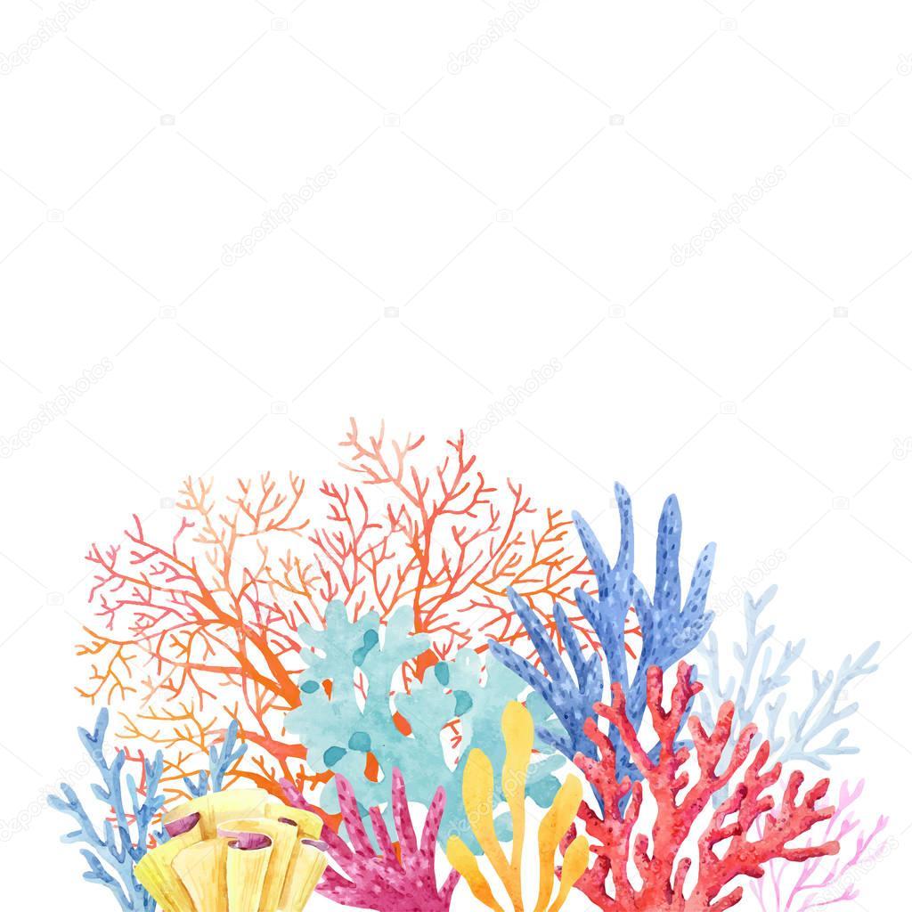 Watercolor coral composition