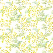 Fotografie Watercolor mimosa vector pattern