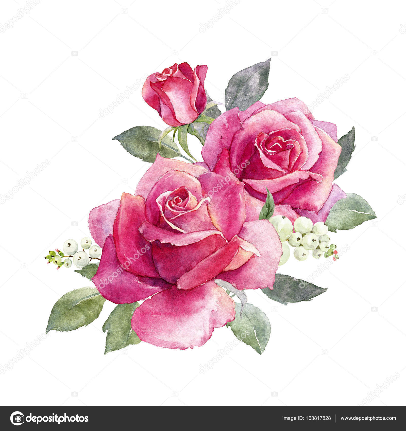 watercolor roses composition stock photo zeninaasya 168817828