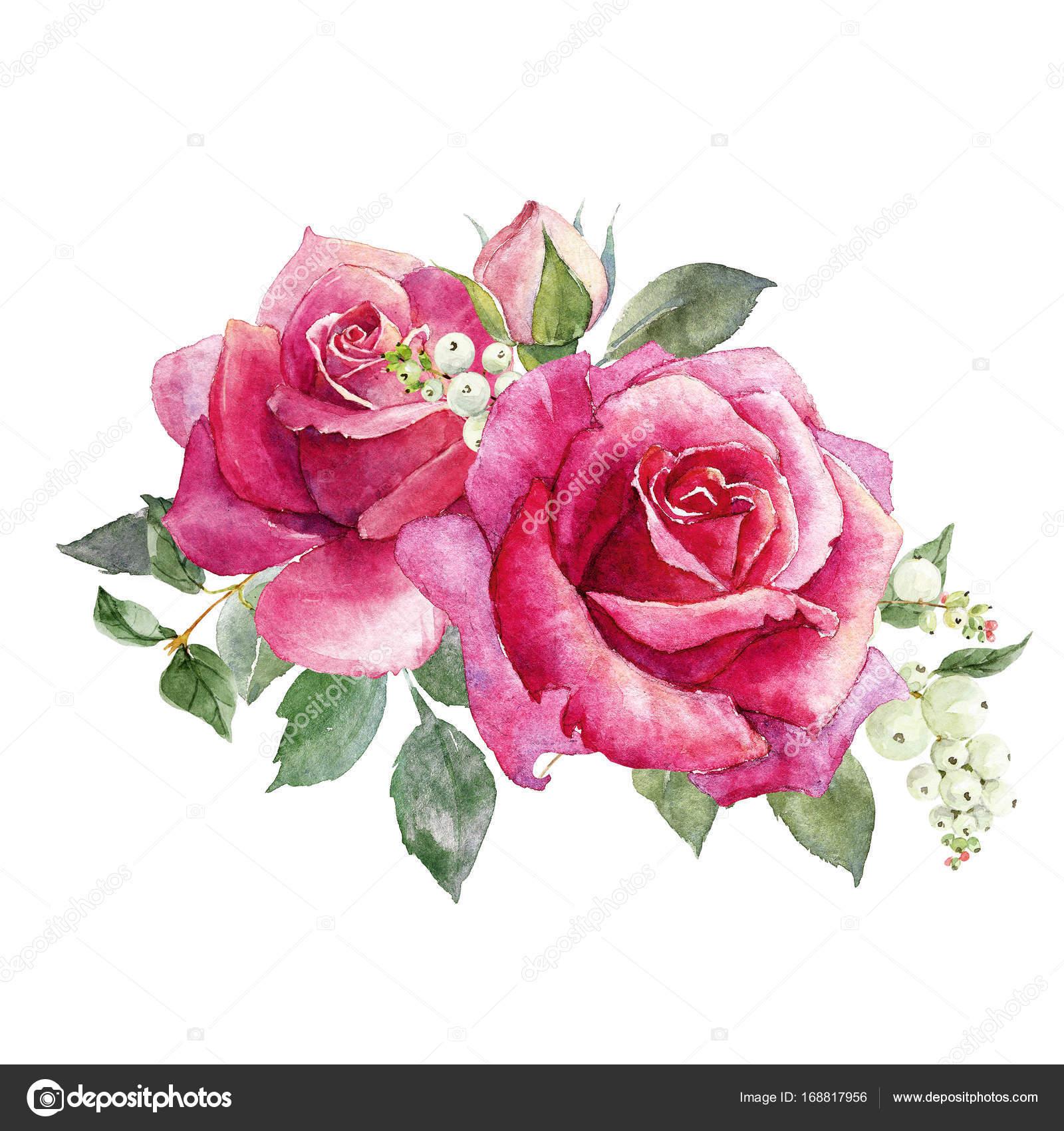Composition De Roses Aquarelle Photographie Zeninaasya C 168817956