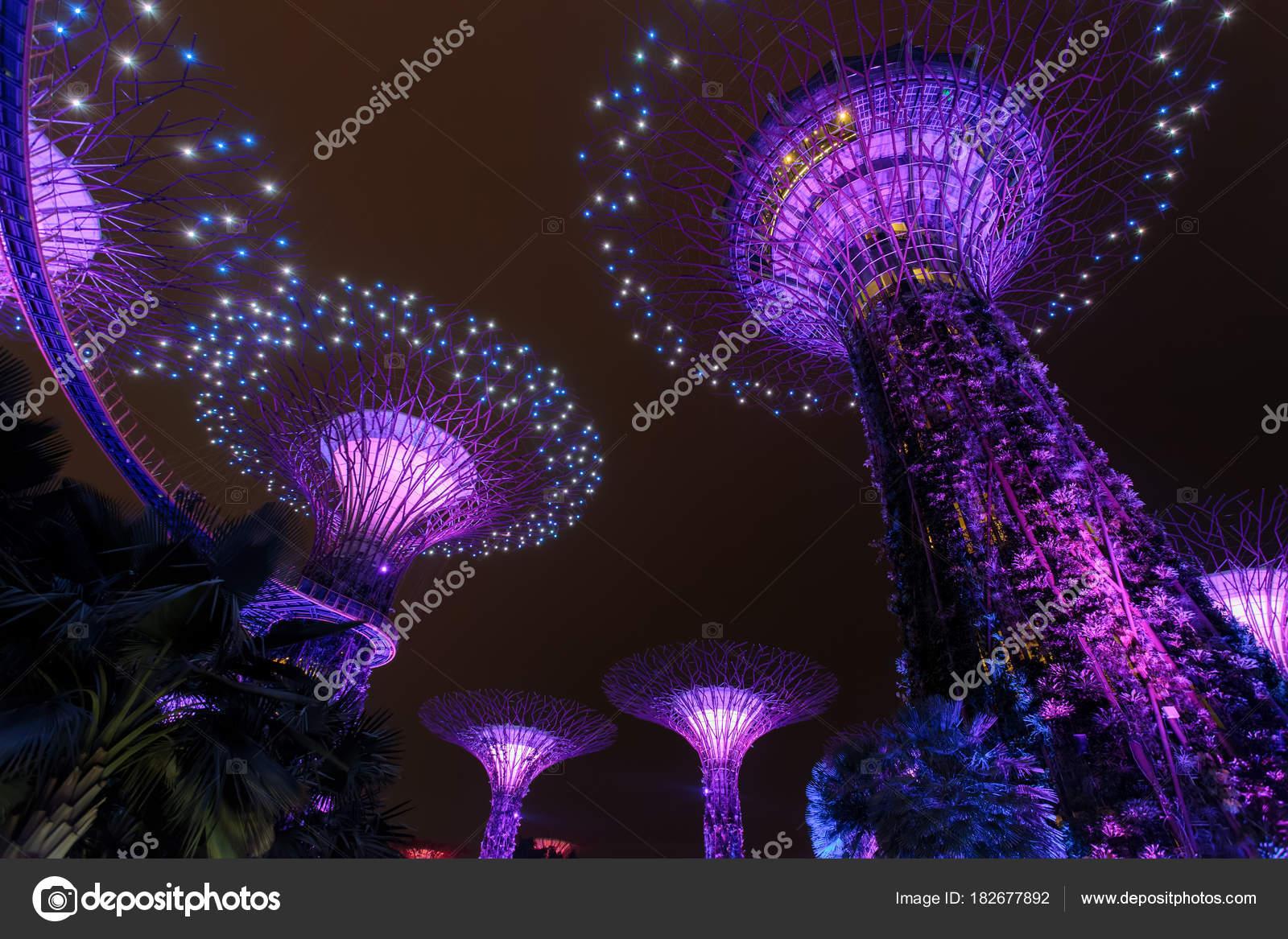 Supertree Grove bos verlicht \'s nachts. Tuinen van de stad Singapore ...