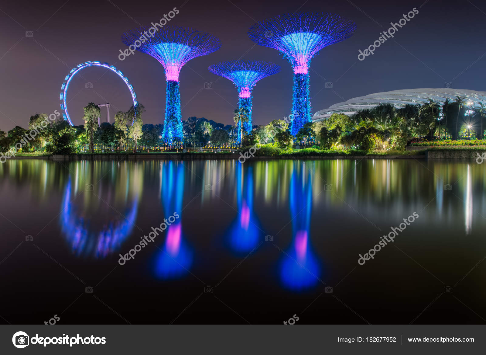 Jardines Por La Bahia Supertree Y Ferris Rueda Singapore Flyer Se