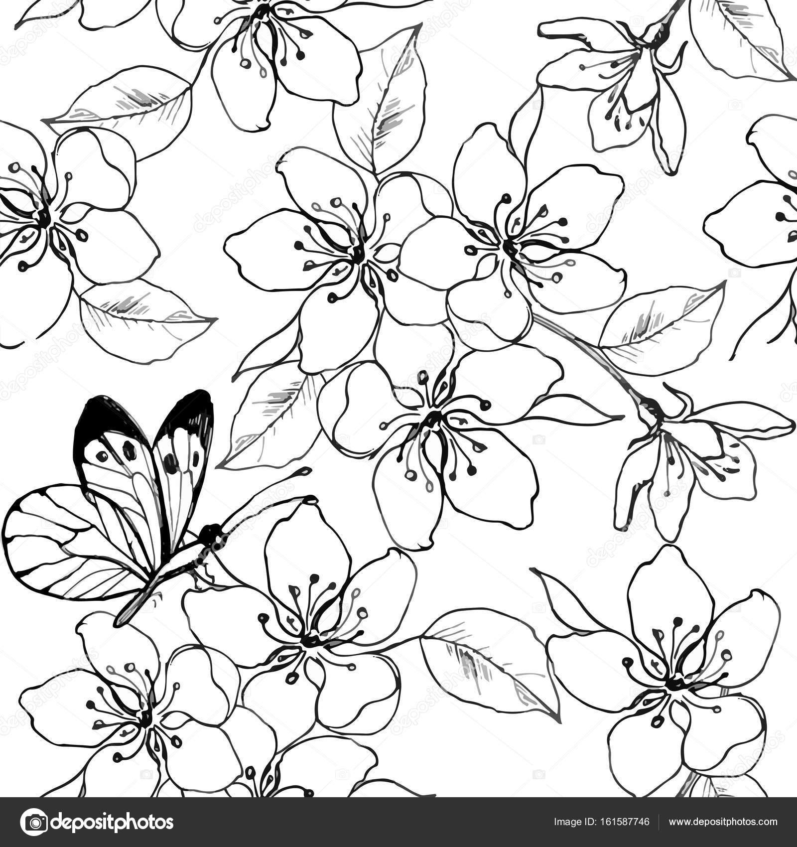 Kiraz çiçeği Armut Elma Ağacı Ile Kelebek Elle çizilmiş Dalı