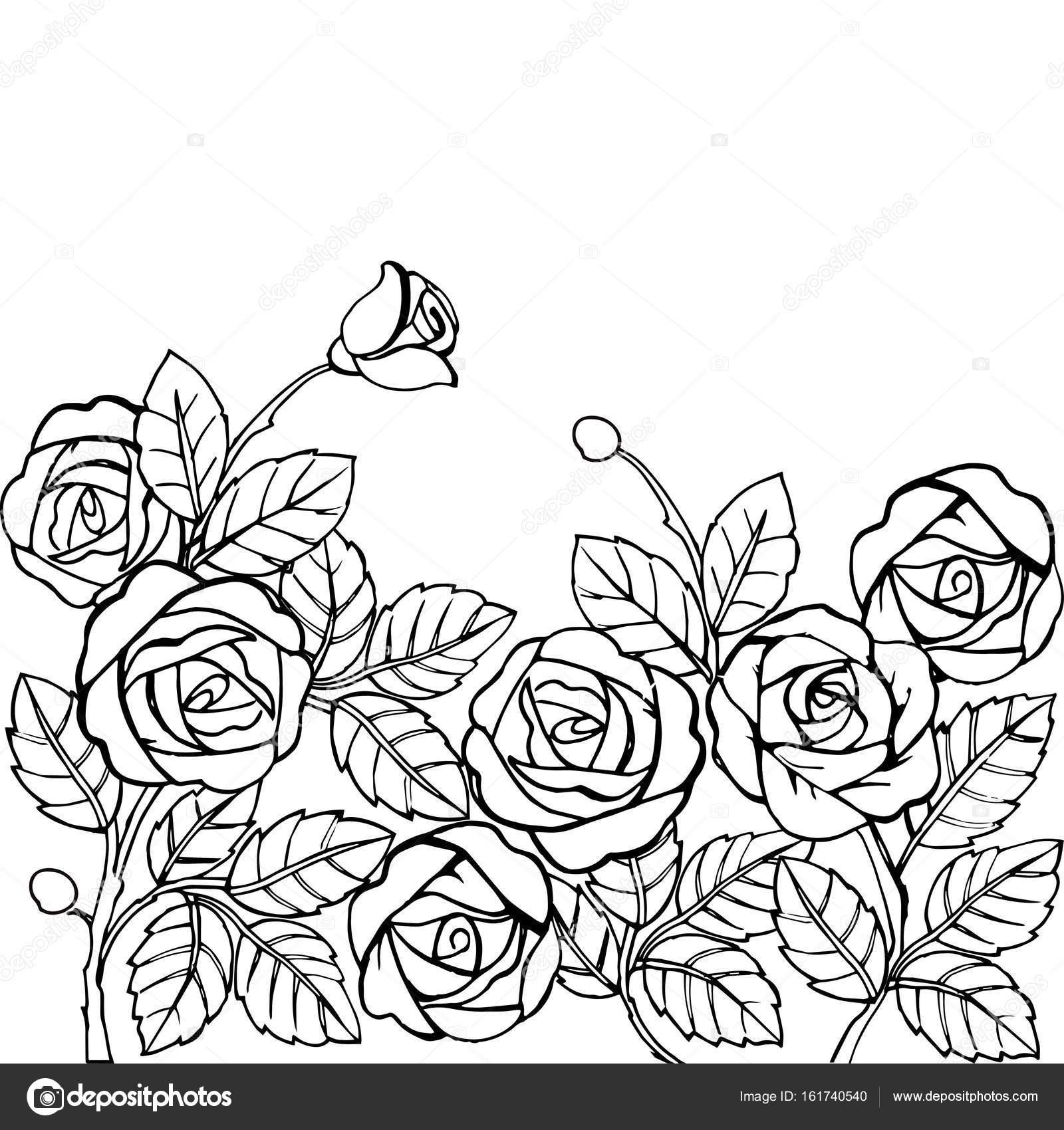 Hand gezeichnet Garten der Rosen für den Anti Stress Malvorlagen ...