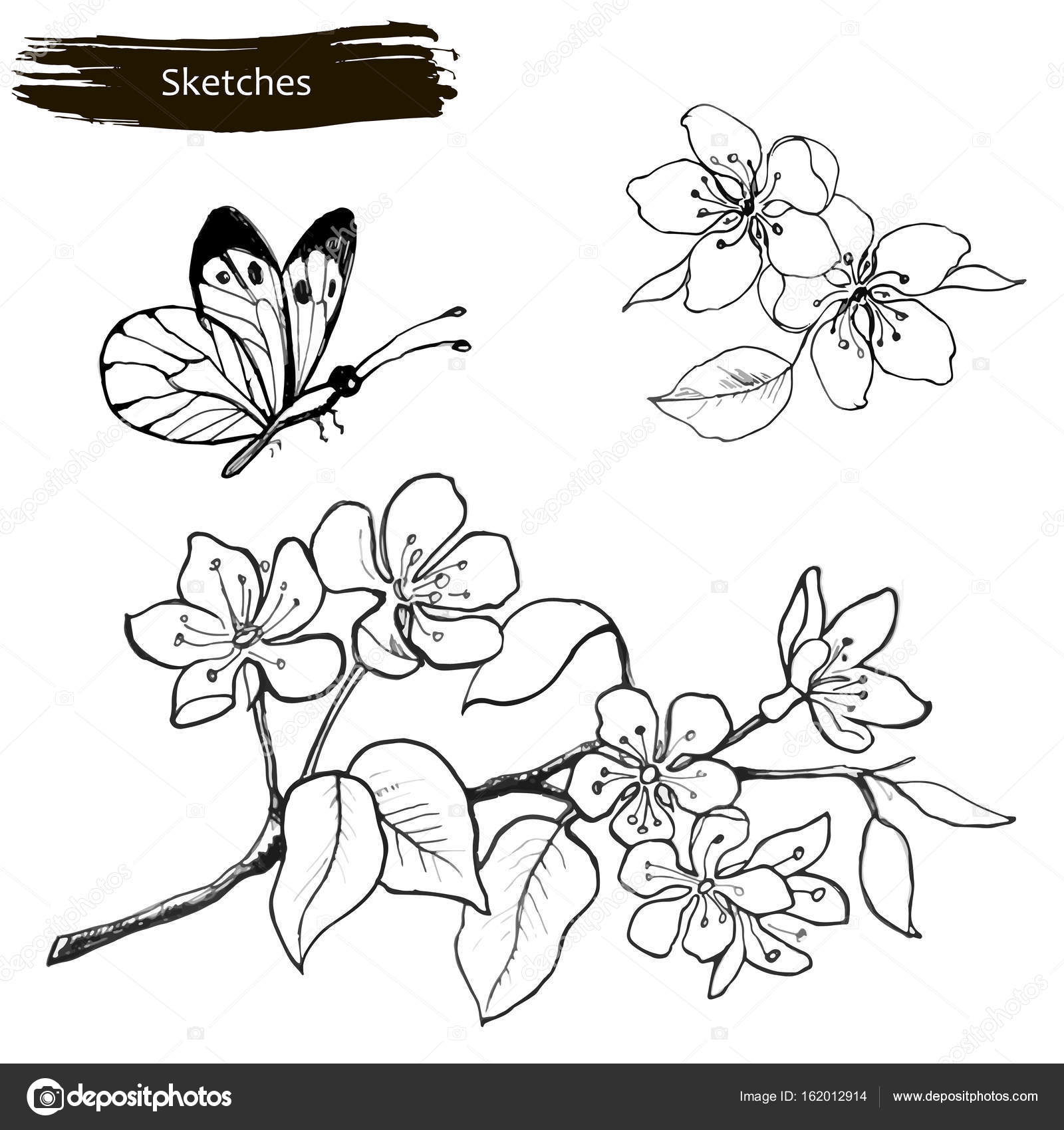 Set drawing by hands of spring flowers a branch of blossoming set drawing by hands of spring flowers a branch of blossoming cherry pear and mightylinksfo