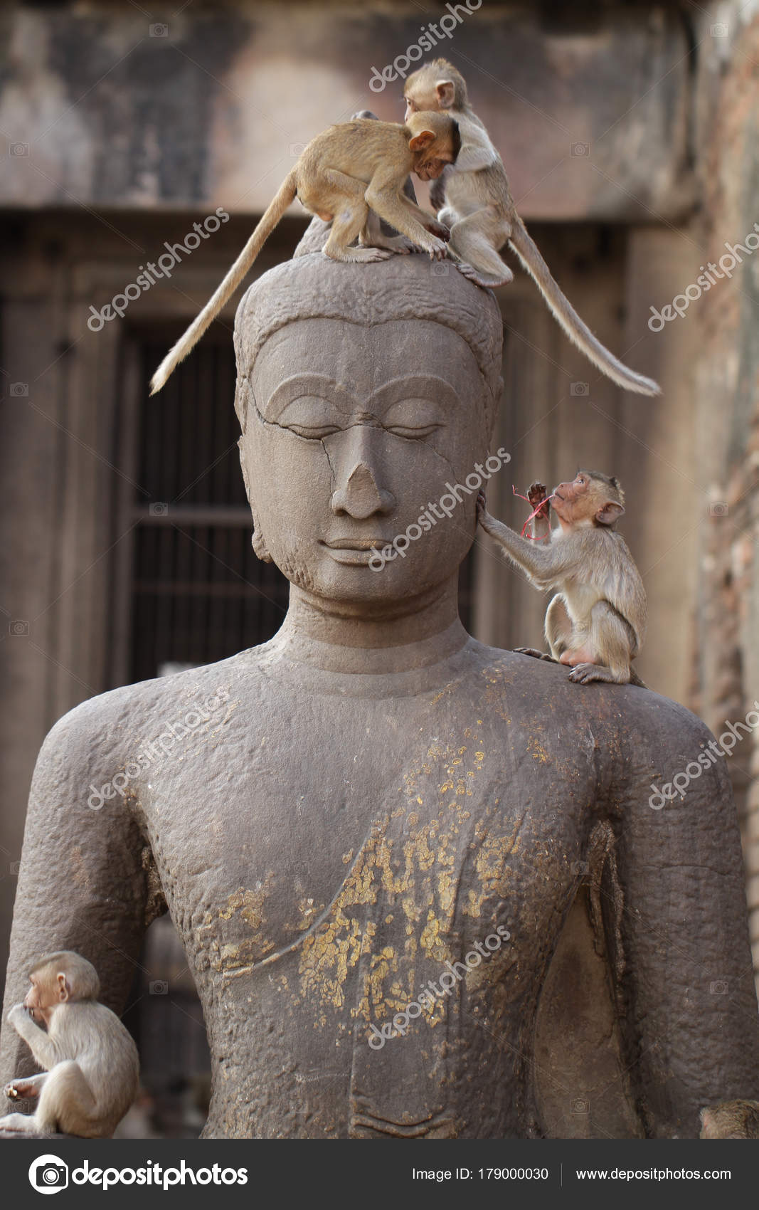 Pie Mono Los Ninos Jugando Antigua Estatua Principal Buda Cuadro