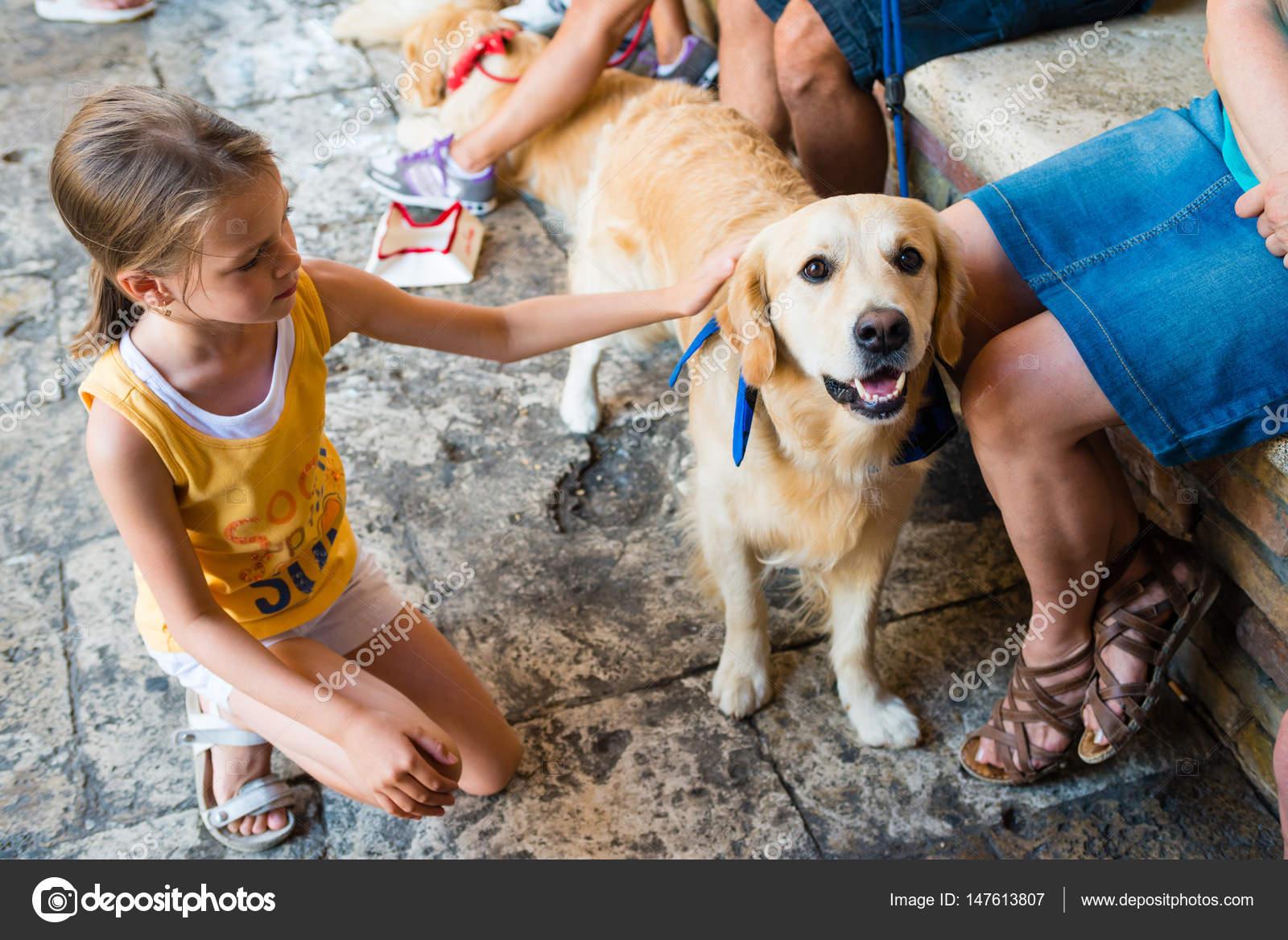 Kleine Madchen Streicheln Hund Stockfoto C Bubutu 147613807