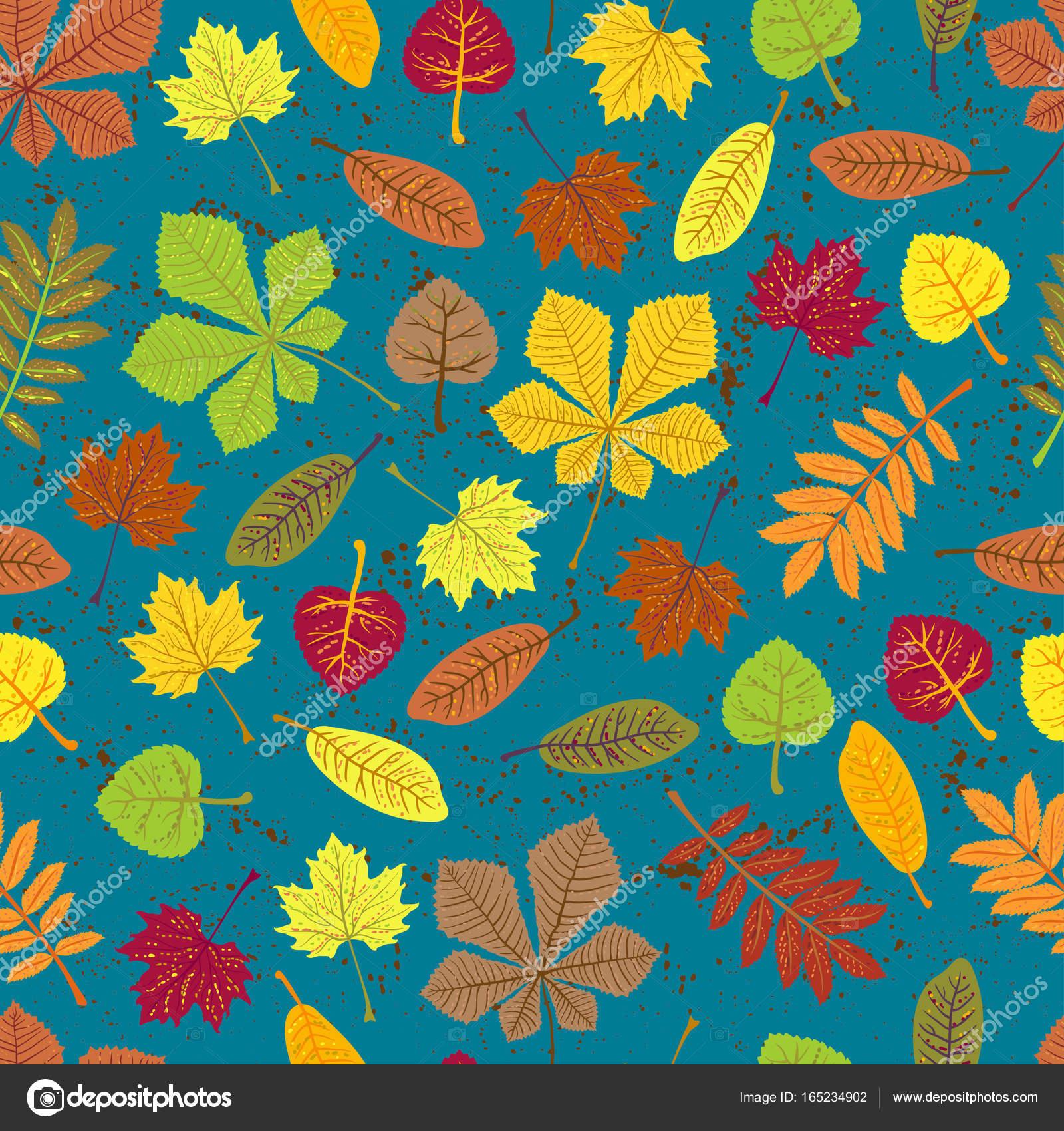 Feuilles De Modele D Orange Sur Fond Bleu Eco Automne Nature Papier