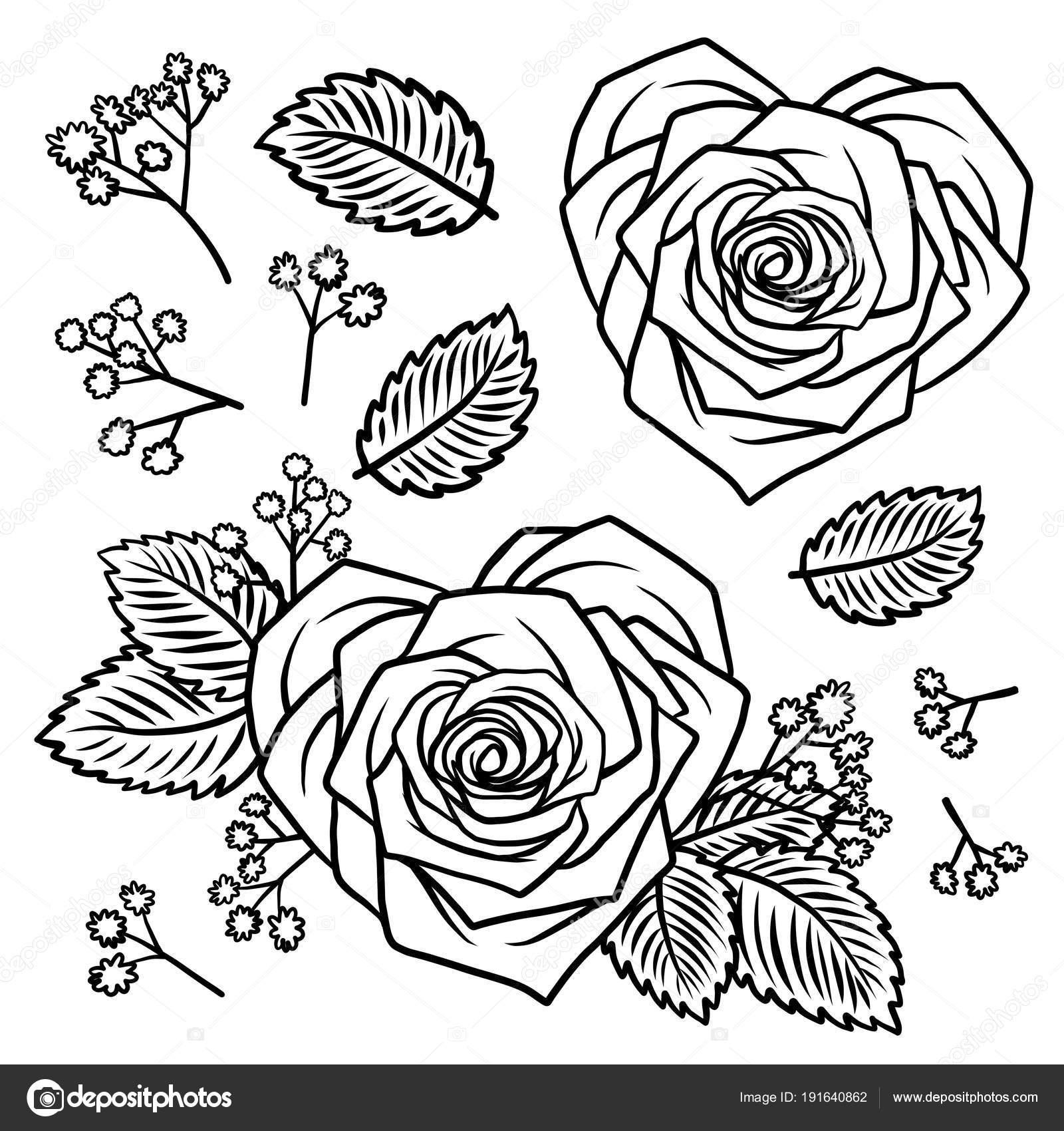 Conjunto de mano doodle corazón Rosa forma flores y hierbas vintage ...