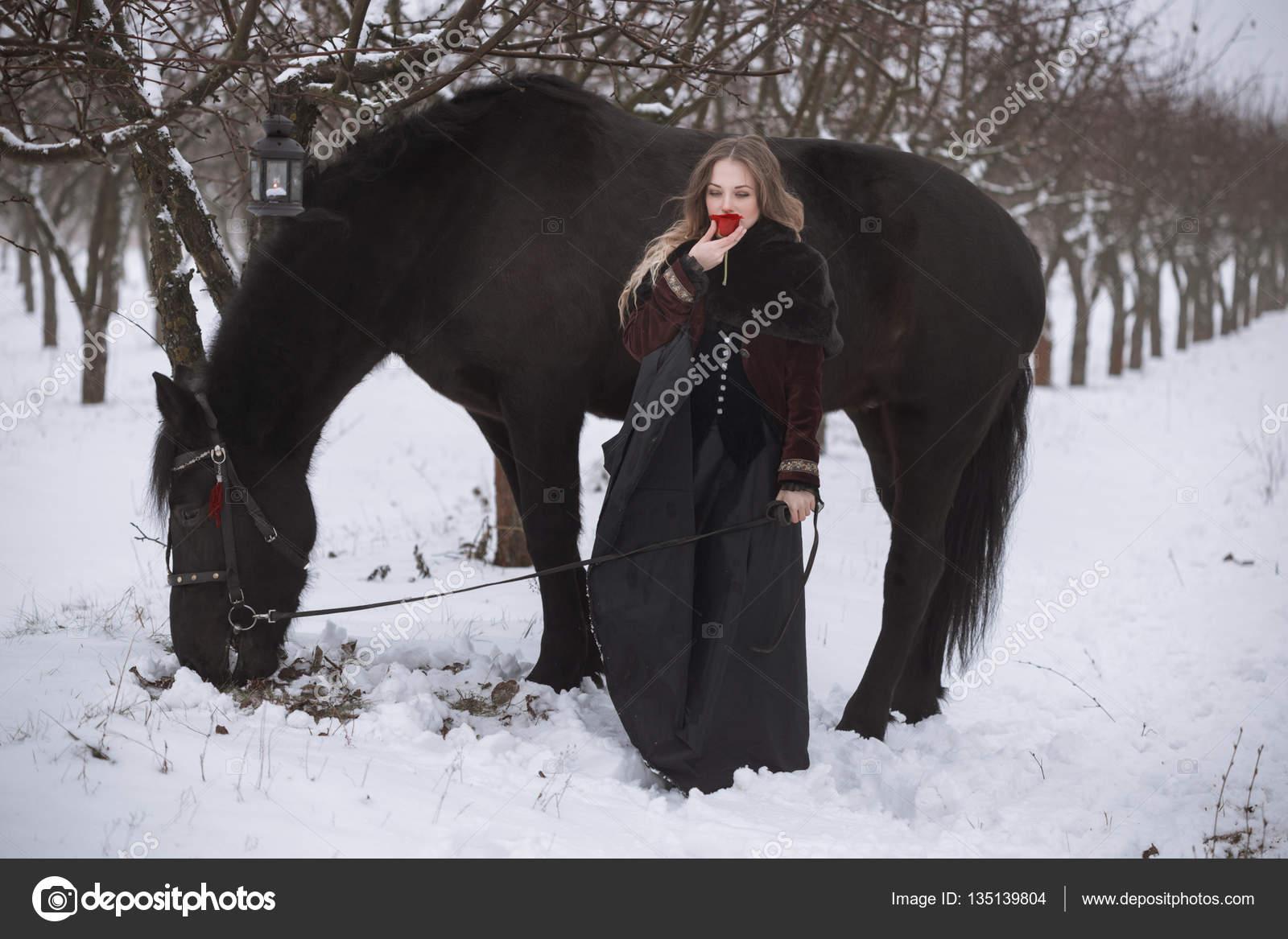 лошадей зимой картинки красивые
