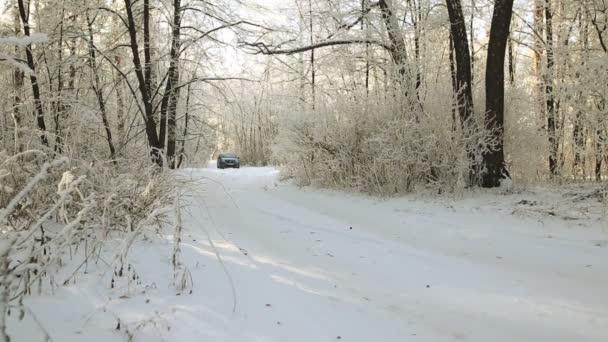 Gomel, Weißrussland - 24. Januar 2018: Auto Reno Logan ist auf einem verschneiten Wald reiten