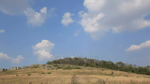Krásná modrá obloha, opuchlé mraky, háje a louky na slunečný den