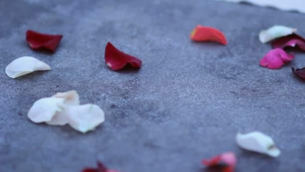 Petali di rosa cadono sul pavimento per un appuntamento romantico. Arredamento per un appuntamento romantico. Decorazioni per una cena romantica a lume di candela.