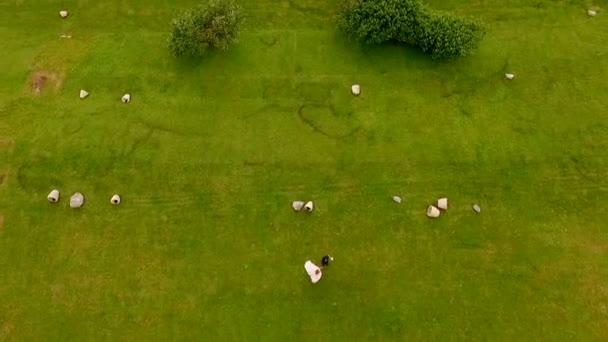 Letecký pohled na nevěstu a ženicha, pobíhající po zelené trávě pozadí hor, Kazbegi, Gruzie